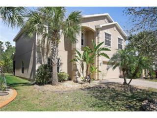 11041 River Trent Ct, Lehigh Acres, FL 33971 (MLS #217017656) :: The New Home Spot, Inc.