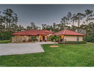 5071 Boxwood Way, Naples, FL 34116 (MLS #217017791) :: The New Home Spot, Inc.