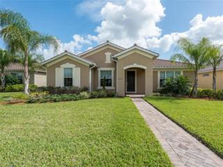 4976 Hemingway Ter, AVE MARIA, FL 34142 (MLS #217017941) :: The New Home Spot, Inc.