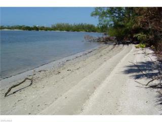 10121 Keewaydin, Naples, FL 34101 (MLS #217017991) :: The New Home Spot, Inc.