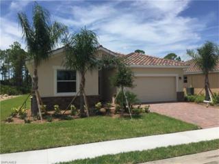2516 Caslotti Way, Cape Coral, FL 33909 (MLS #217018066) :: The New Home Spot, Inc.