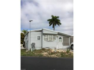 11531 Slipper Shell Dr, Fort Myers, FL 33908 (#217018175) :: Homes and Land Brokers, Inc