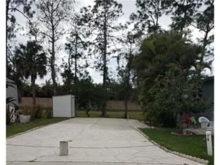 78 Vanda Sanctuary, Naples, FL 34114 (MLS #217018316) :: The New Home Spot, Inc.