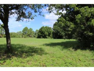 27028 Rue De Paix, Bonita Springs, FL 34135 (MLS #217018480) :: The New Home Spot, Inc.