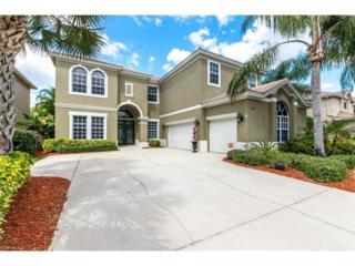 20570 Rookery Dr, Estero, FL 33928 (MLS #217018619) :: The New Home Spot, Inc.