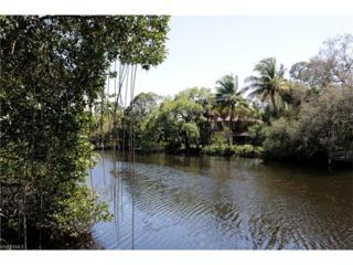 27105 Serrano Way, Bonita Springs, FL 34135 (MLS #217018622) :: The New Home Spot, Inc.