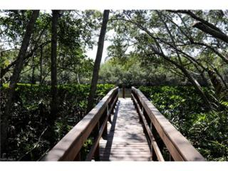 27117 Serrano Way, Bonita Springs, FL 34135 (MLS #217018639) :: The New Home Spot, Inc.