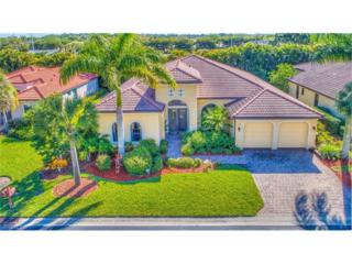 21691 Red Latan Way, Estero, FL 33928 (MLS #217019023) :: The New Home Spot, Inc.