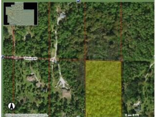 Kearney Ave, Naples, FL 34117 (MLS #217019203) :: The New Home Spot, Inc.