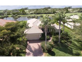 20082 Buttermere Ct, Estero, FL 33928 (MLS #217019976) :: The New Home Spot, Inc.