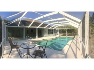 4090 27th Ave NE, Naples, FL 34120 (MLS #217021118) :: The New Home Spot, Inc.