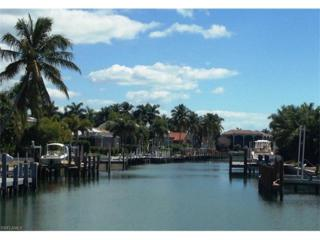 295 Grapewood Ct, Marco Island, FL 34145 (MLS #217021311) :: The New Home Spot, Inc.