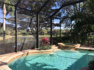15616 Villoresi Way, Naples, FL 34110 (MLS #217021442) :: The New Home Spot, Inc.