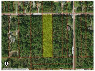 47th Ave NE, Naples, FL 34120 (MLS #217021562) :: The New Home Spot, Inc.