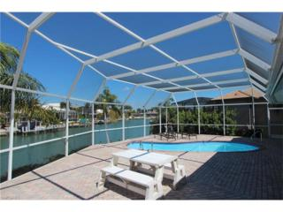 335 Cottage Ct, Marco Island, FL 34145 (MLS #217022572) :: The New Home Spot, Inc.