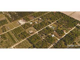 6252 Hodges Dr, Bokeelia, FL 33922 (MLS #217027619) :: RE/MAX DREAM