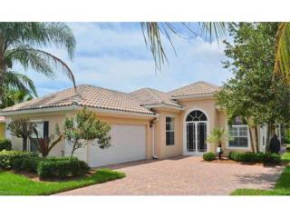 28372 Nautica Ln, Bonita Springs, FL 34135 (MLS #217028957) :: RE/MAX DREAM