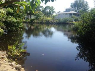 27256 Belle Rio Dr, Bonita Springs, FL 34135 (MLS #217036434) :: RE/MAX DREAM