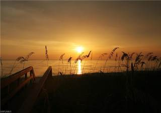 4251 Gulf Shore BLVD N 16B,