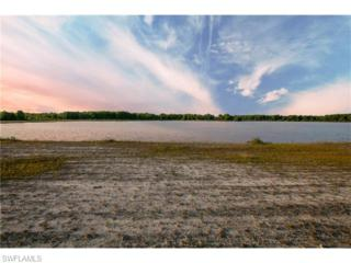 625 Shady Hollow Blvd W, Naples, FL 34120 (MLS #215041311) :: The New Home Spot, Inc.