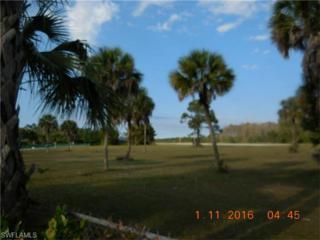 4222 Skyway Dr Sw Lot#12, Naples, FL 34112 (MLS #216000524) :: The New Home Spot, Inc.
