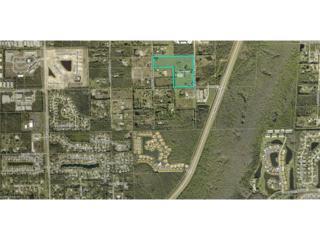 12091 Blasingim Rd, Fort Myers, FL 33966 (MLS #216011570) :: The New Home Spot, Inc.