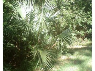 3105 Woodside Ave, Naples, FL 34112 (MLS #216063128) :: The New Home Spot, Inc.