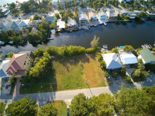 27874 Forester Dr, Bonita Springs, FL 34134 (MLS #216072164) :: The New Home Spot, Inc.