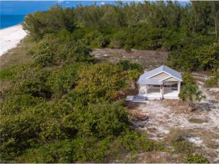 10581 Keewaydin, Naples, FL 34102 (MLS #216078964) :: The New Home Spot, Inc.