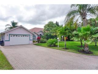 12309 Avida Ln, Bonita Springs, FL 34135 (MLS #216080515) :: The New Home Spot, Inc.