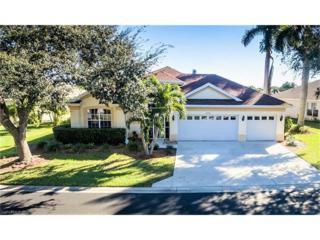 23171 Marsh Landing Blvd, Estero, FL 33928 (MLS #217003313) :: The New Home Spot, Inc.