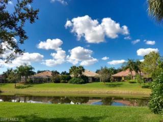 28020 Grossetto Way, Bonita Springs, FL 34135 (MLS #217004451) :: The New Home Spot, Inc.