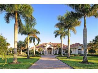 11534 Aerie Ln, Naples, FL 34120 (MLS #217010057) :: The New Home Spot, Inc.