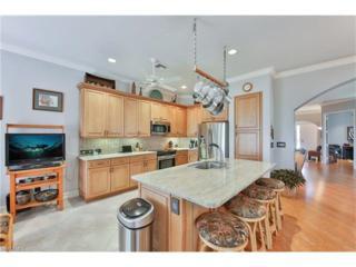 9078 Springview Loop, Estero, FL 33928 (MLS #217010066) :: The New Home Spot, Inc.