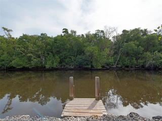 614 Collier Ave, Everglades City, FL 34145 (MLS #217011116) :: The New Home Spot, Inc.
