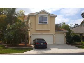 23033 Marsh Landing Blvd, Estero, FL 33928 (MLS #217011756) :: The New Home Spot, Inc.