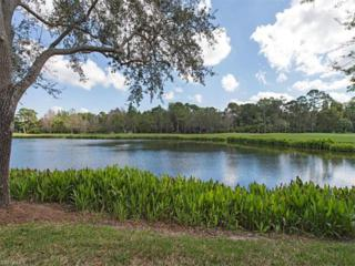 21301 Pelican Sound Dr #101, Estero, FL 33928 (MLS #217017200) :: The New Home Spot, Inc.