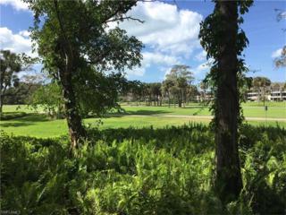 104 Wilderness Drive #138, Naples, FL 34105 (MLS #217017451) :: The New Home Spot, Inc.