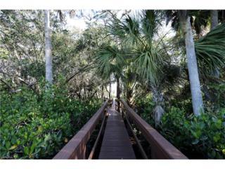 27109 Serrano Way, Bonita Springs, FL 34135 (MLS #217018627) :: The New Home Spot, Inc.