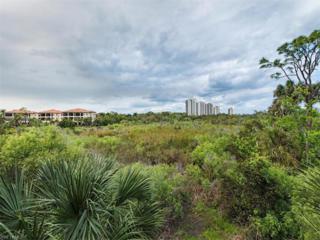 4730 Colony Villas Dr #802, Bonita Springs, FL 34134 (MLS #217019082) :: The New Home Spot, Inc.