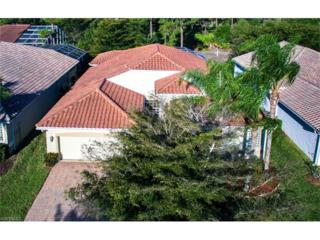 20232 Foxworth Cir, Estero, FL 33928 (MLS #217019512) :: The New Home Spot, Inc.