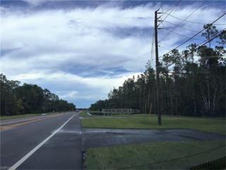 2801 E County Barn Rd W, Naples, FL 34112 (MLS #214048283) :: The New Home Spot, Inc.