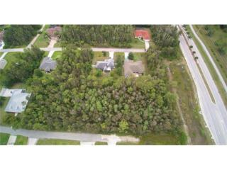 6524 Babcock St, Fort Myers, FL 33966 (MLS #216034833) :: The New Home Spot, Inc.