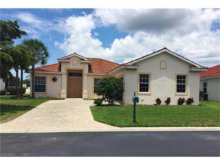19940 Estero Verde Dr, Fort Myers, FL 33908 (MLS #216039382) :: The New Home Spot, Inc.
