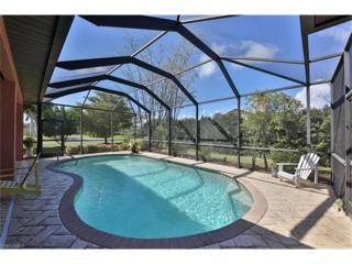 20701 Groveline Ct, Estero, FL 33928 (MLS #217017137) :: The New Home Spot, Inc.
