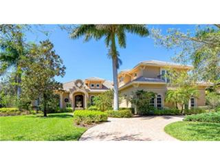 20460 Riverbrooke Run, Estero, FL 33928 (MLS #217020196) :: The New Home Spot, Inc.