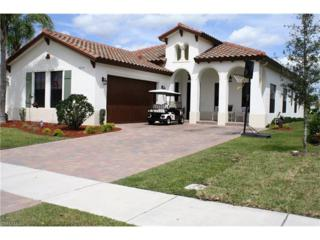 5279 Ferrari Ave, AVE MARIA, FL 34142 (MLS #217017583) :: The New Home Spot, Inc.