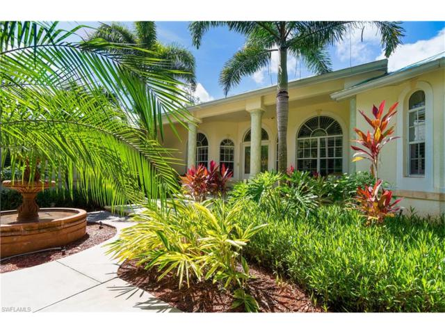3560 1st Ave NW, Naples, FL 34120 (MLS #216061382) :: The New Home Spot, Inc.