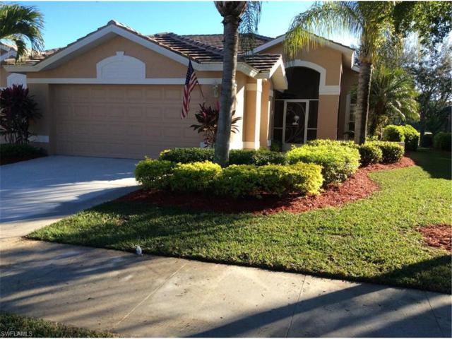 3956 Cordgrass Way, Naples, FL 34112 (MLS #217052445) :: The New Home Spot, Inc.