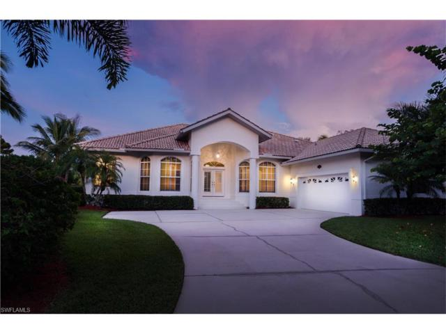 27021 Driftwood Drive, Bonita Springs, FL 34135 (MLS #217052952) :: RE/MAX Realty Group